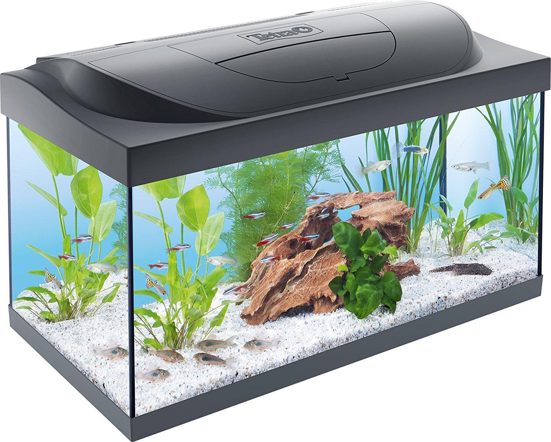 rundes aquarium kaufen